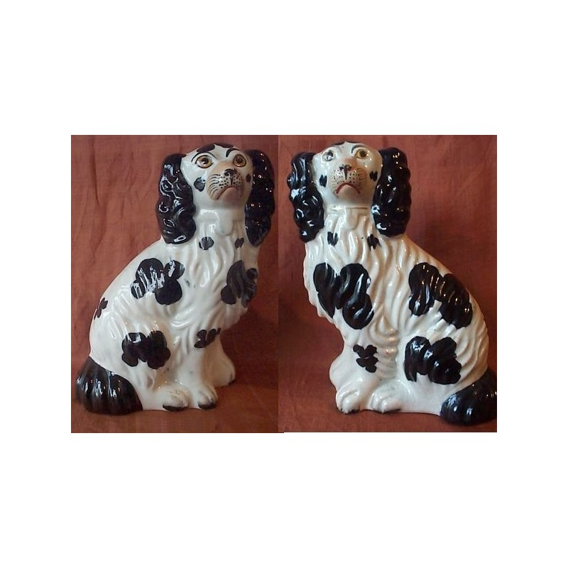 Pair of Black and White Spaniels