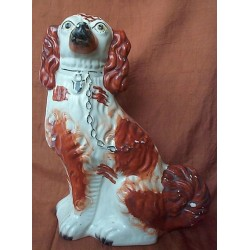 Red Patch Spaniel