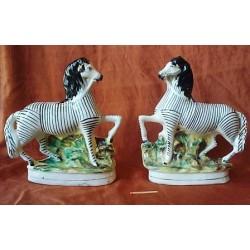 Pair Zebras