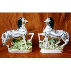 Pair of prancing Zebras