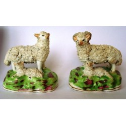 Pair ewe and ram with lambs