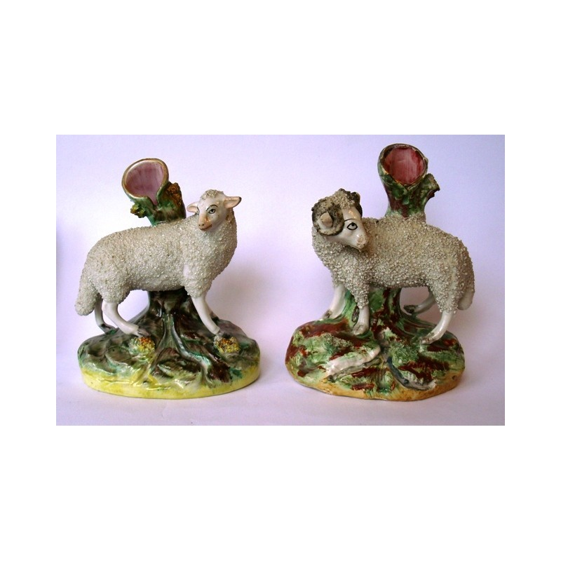 Matched pair ewe and ram