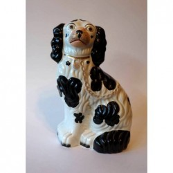 Spaniel right side